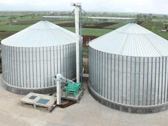 Flat bottom grain storage silos